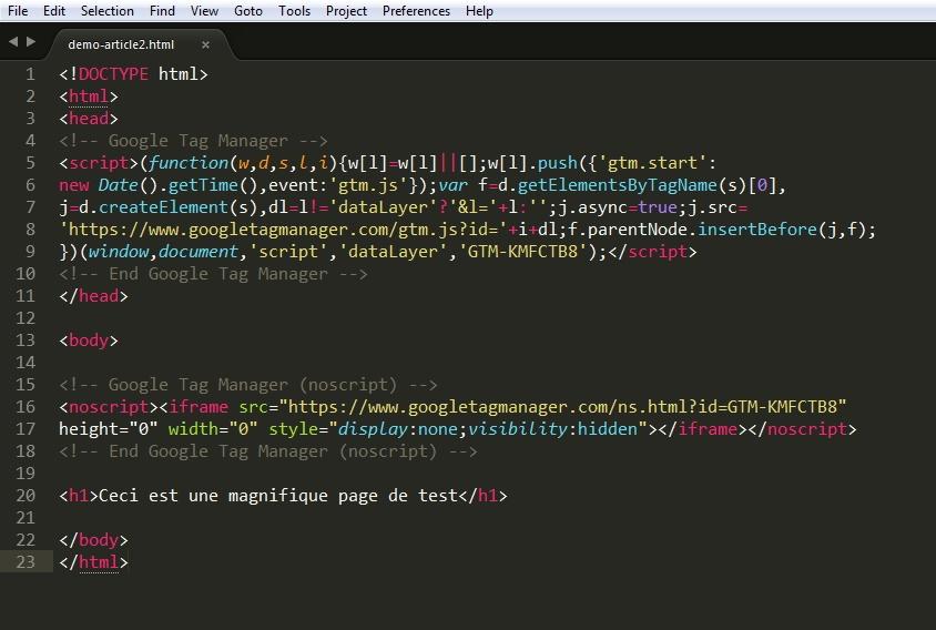 Insertion de Google Tag Manager via un simple copier-coller dans un éditeur de texte
