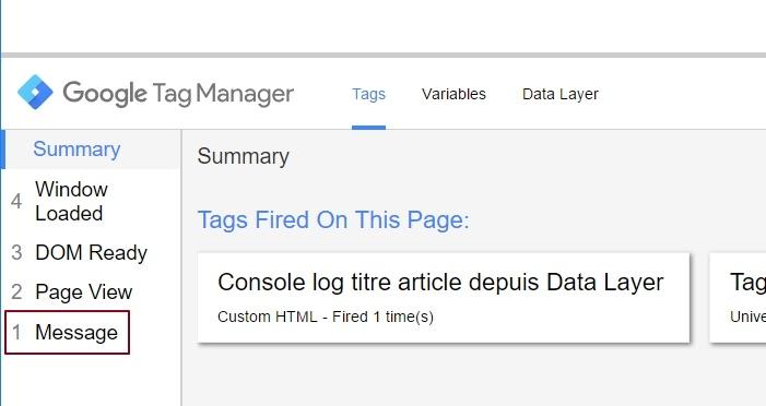 """Attribut """"message"""" dans le volet de preview de Google Tag Manager"""